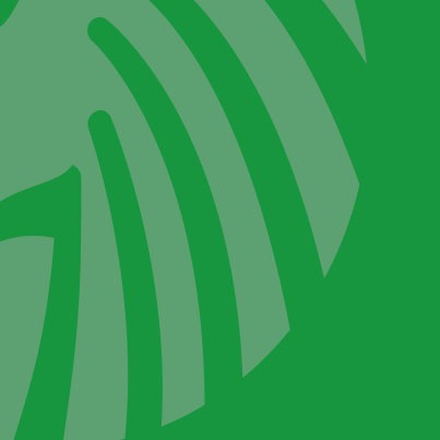 bioloewe_logo_post_brotversand_bio_braunschweig